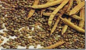 bean rush in India