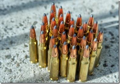 gun laws uS