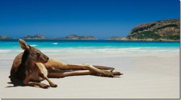 australian holiday