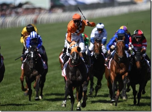 the horse racing cup australia